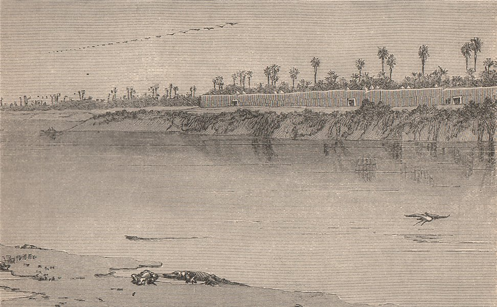 Associate Product The Babusso or Eastern Chari at Miskin, South-East of Logone. Chad Basin 1885