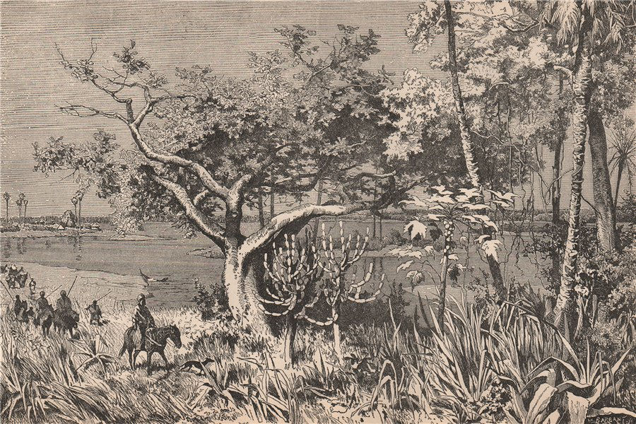 Associate Product View taken on the banks of the Chari. Chad. The Chad Basin 1885 old print