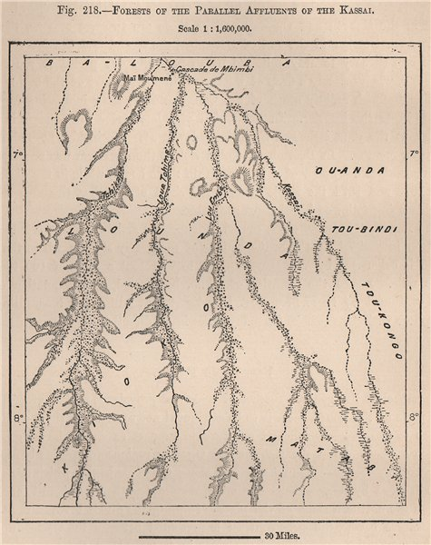 Associate Product Forests of the parallel affluents of the Kasai. Congo. Congo Basin 1885 map