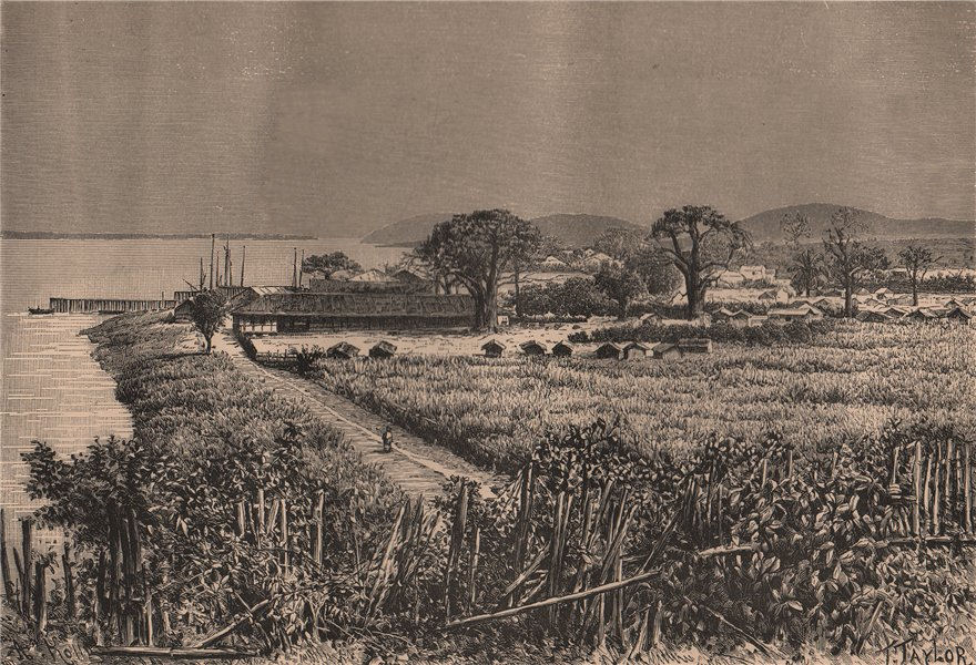 General view of Boma. Congo. Congo Basin 1885 old antique print picture
