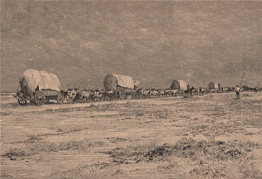 Associate Product Convoy of Emigrants in the Makarakara Country. South Africa. Cape Colony 1885