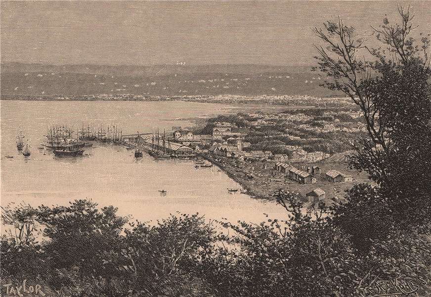 Associate Product Port Natal (Durban) and Durban - View from the Bluff. South Africa 1885 print
