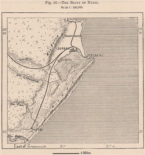 Associate Product The Bluff of Natal. South Africa 1885 old antique vintage map plan chart