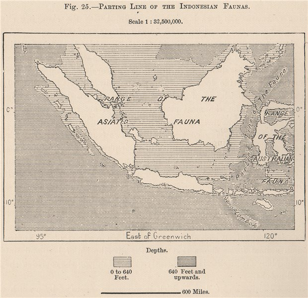 Associate Product Wallace Line separating the Indonesian Faunas. East Indies 1885 old map