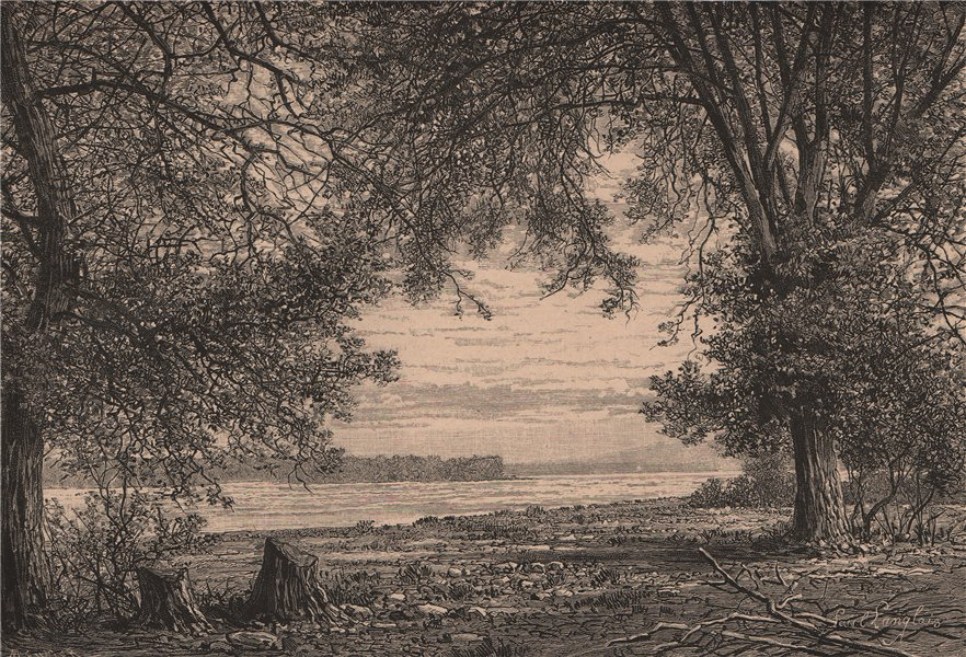 Associate Product Ottawa River - View taken at the Saut du Carillon. Canada 1885 old print