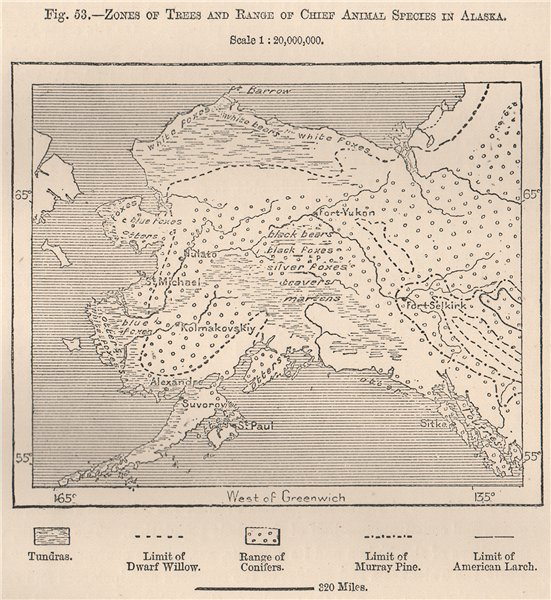 Associate Product Zones of Trees & range of chief animal species in Alaska.Bears foxes 1885 map