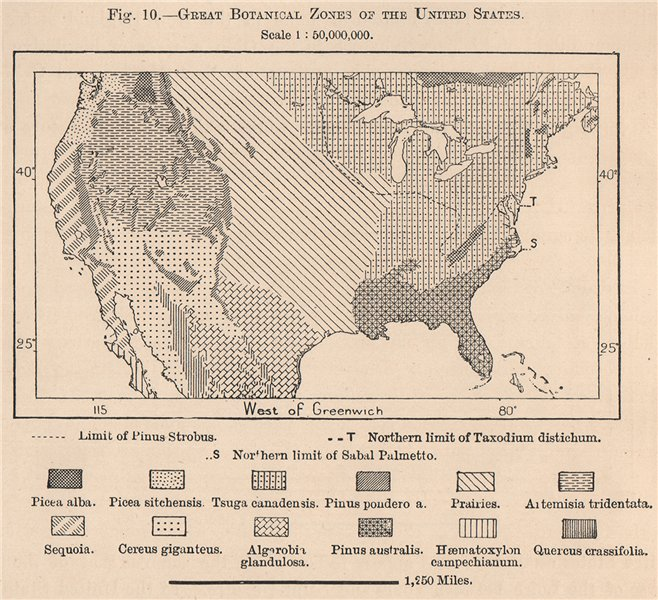 Associate Product Great Botanical Zones of the United States. USA 1885 old antique map chart