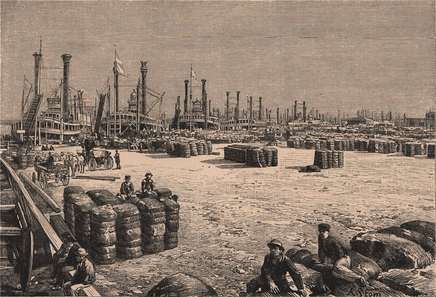 New Orleans - View taken on the Levee. Louisiana 1885 old antique print