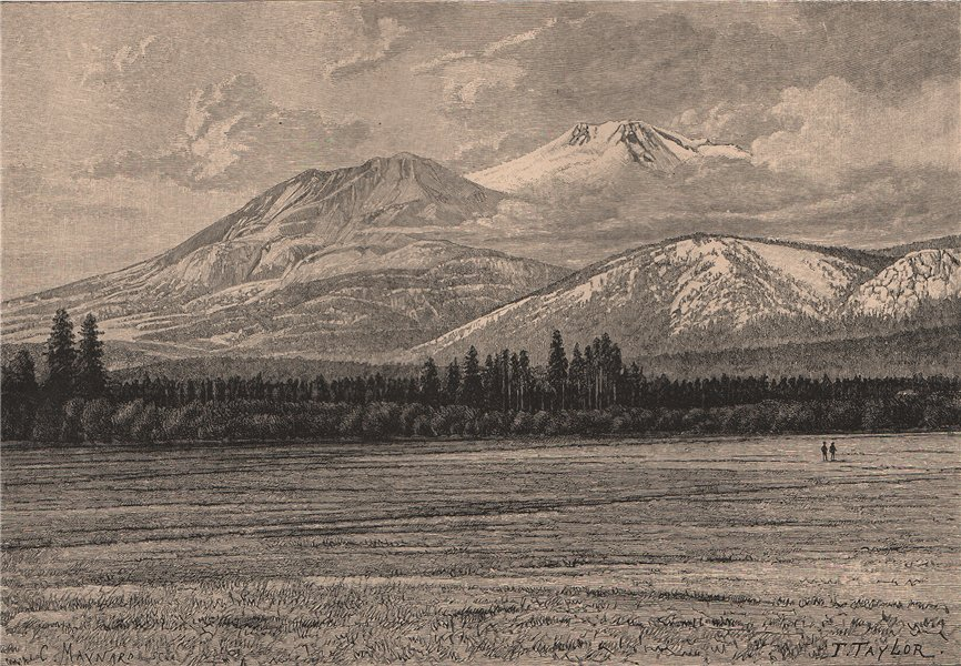 Associate Product Mount Shasta. California 1885 old antique vintage print picture