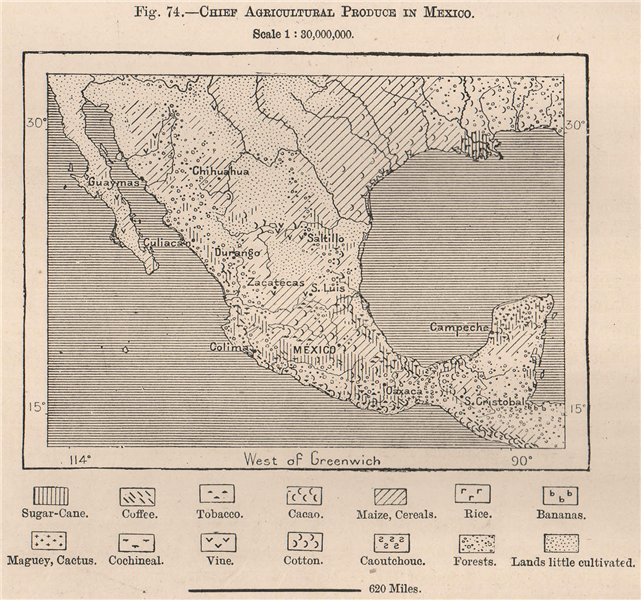 Associate Product Chief Agricultural produce in Mexico 1885 old antique vintage map plan chart