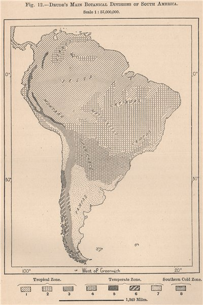 Associate Product Drude's main Botanical divisions of South America 1885 old antique map chart