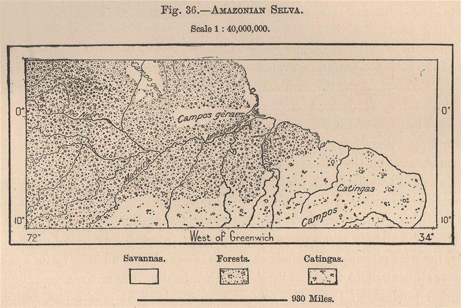 Associate Product Amazonian Selva. Brazil. Amazonia 1885 old antique vintage map plan chart