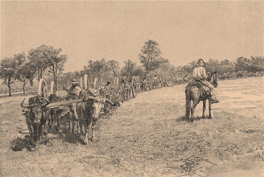 Associate Product Convoy of Waggons. Paraguay 1885 old antique vintage print picture