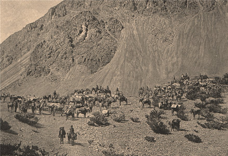 Associate Product Convoy of Muleteers at the foot of the cordillera. Argentina 1885 old print