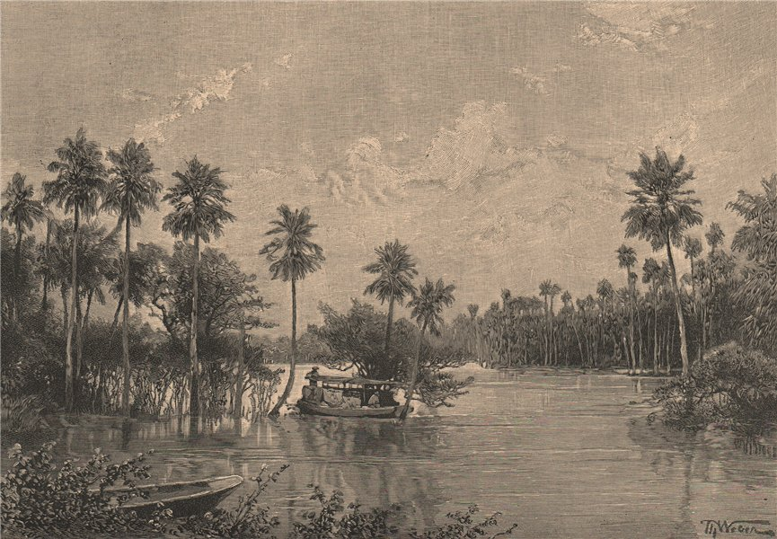 Associate Product Las Palmas Lagunes, near the mouth of the Pilcomayo. Argentina 1885 old print