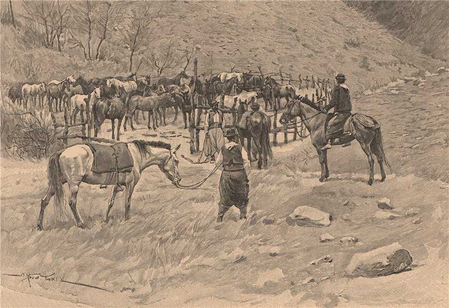 Corral in the province of Patagones. Argentina 1885 old antique print picture