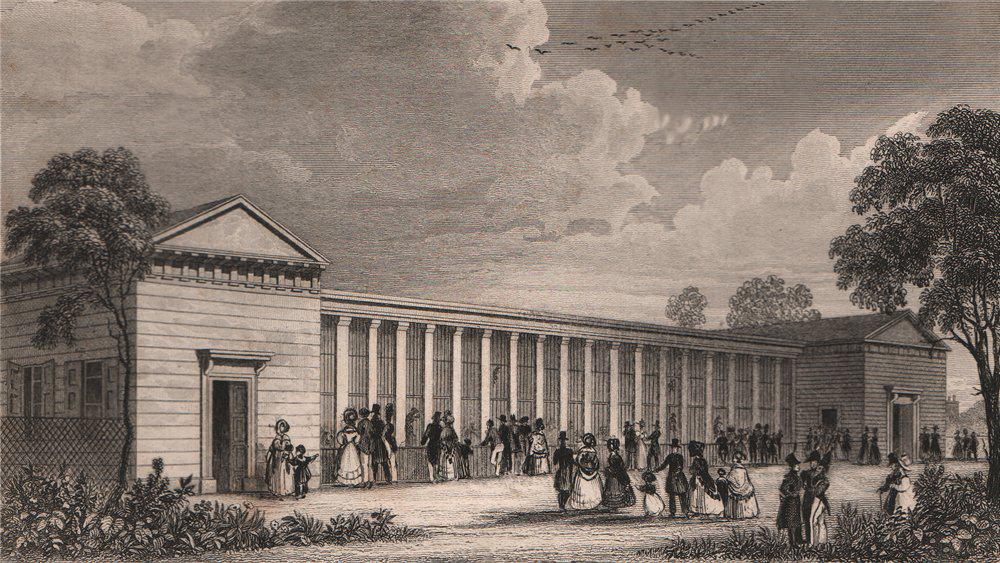 Associate Product PARIS. Menagerie, Jardin des Plantes. BICKNELL 1845 old antique print picture