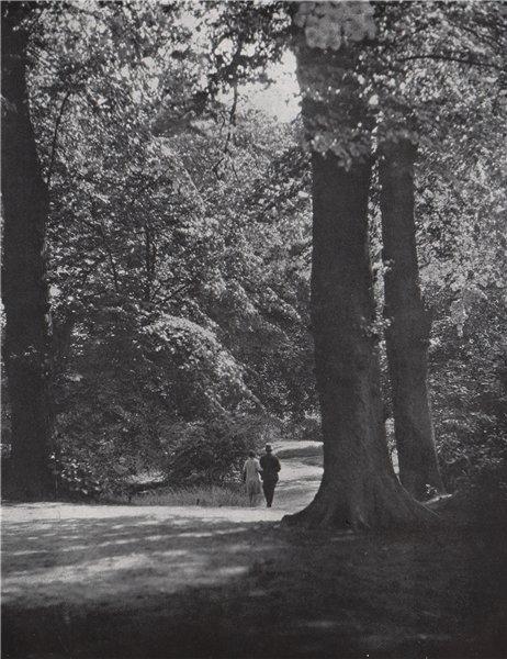 Associate Product Kenwood. E.O. HOPPÉ. London 1930 old vintage print picture