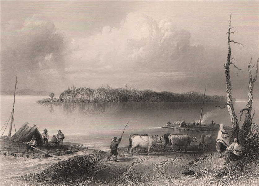 Associate Product ONTARIO. Navy Island, Niagara River, from the Canadian side. BARTLETT 1842