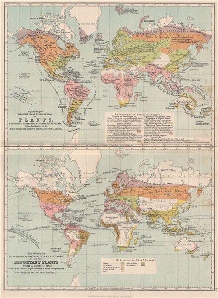 WORLD. Plant crop distribution. Humboldt Schouws;Palm pines Erica food 1886 map