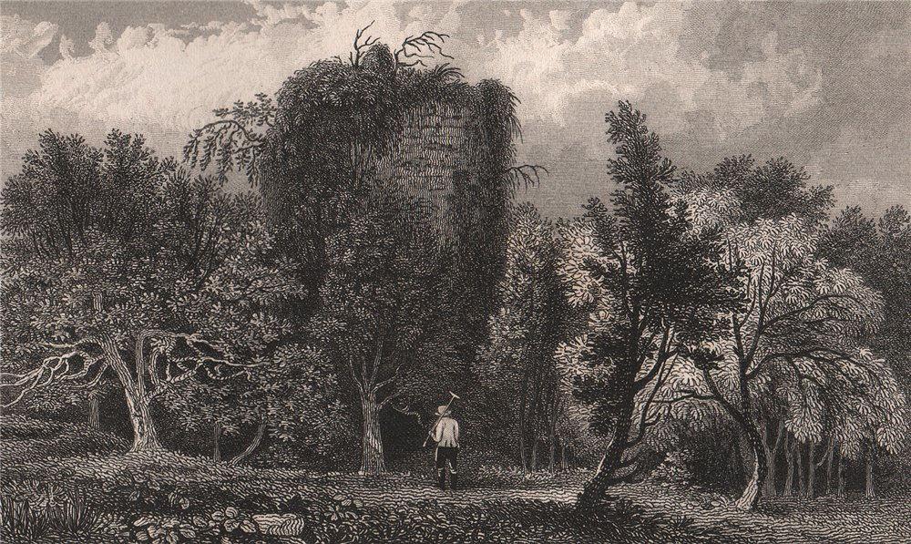 Associate Product Rosamond's tower at Westenhanger Castle, near Hythe. Kent . SHEPHERD 1829
