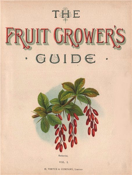 Title page Vol 1. BERBERRIES. WRIGHT Chromolithograph 1892 old antique print