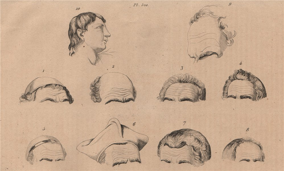 Associate Product FOREHEADS. Fronts. Profile of a Devotee. physiognomy 1834 old antique print
