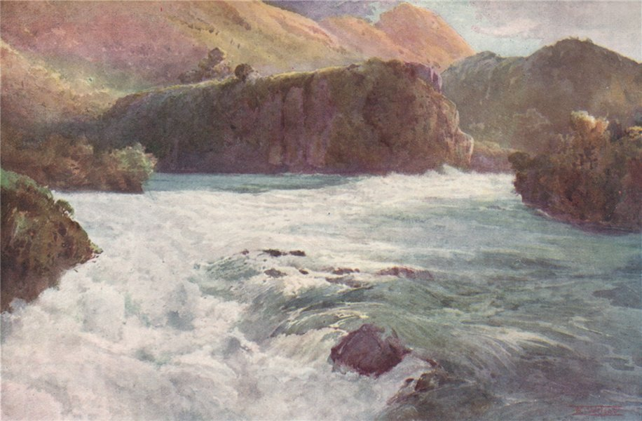 Associate Product 'Aratiatia Rapids' by Frank Wright. New Zealand 1908 old antique print picture