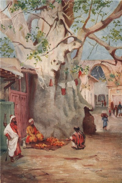 Associate Product 'Great Plantain in the Bazaar, Damascus' by Margaret Thomas. Syria 1908 print