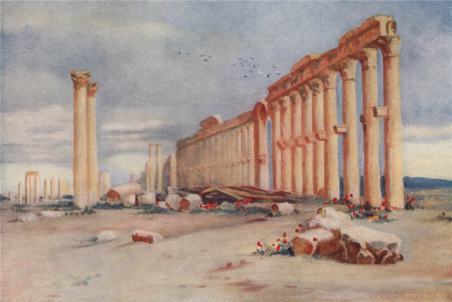 Associate Product Colonnade, Palmyra & Turkish Castle in the distance. Margaret Thomas. Syria 1908