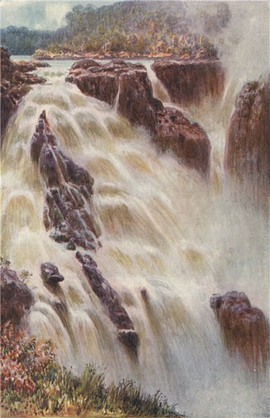 Associate Product 'The Barron Falls, Queensland' by Percy Spence. Australia 1910 old print