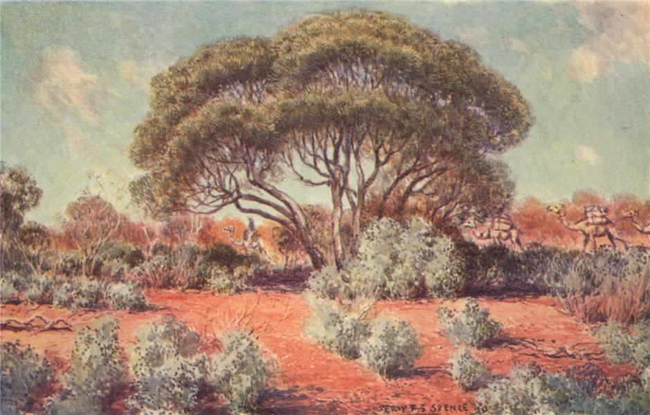 Associate Product 'It is not all desert in the heart of Australia' by Percy Spence 1910 print