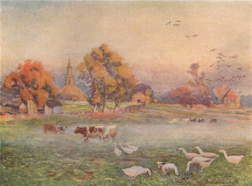 Associate Product 'The Abbey Fields, Kenilworth' by Frederick Whitehead. Warwickshire 1906 print