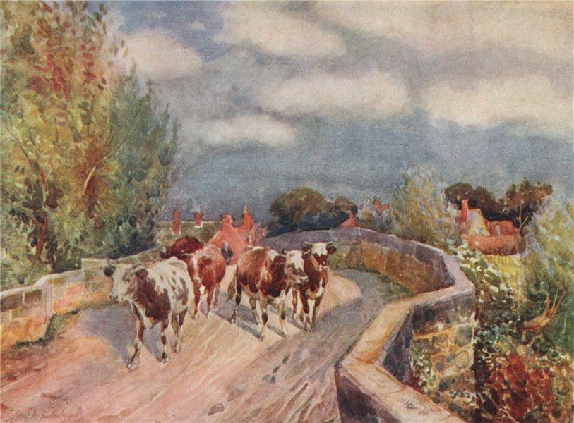 Associate Product 'Marton Bridge' by Frederick Whitehead. Warwickshire 1906 old antique print