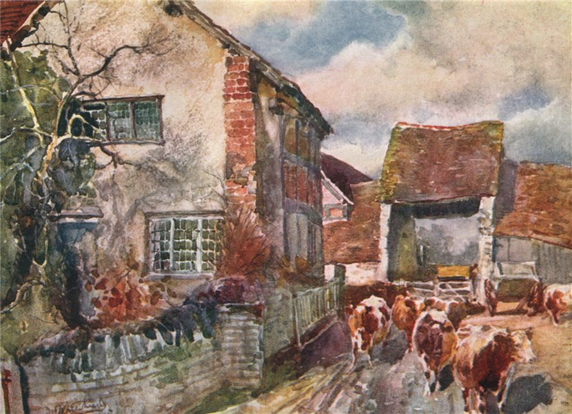 Associate Product 'Mary Arden's Cottage, Wilmcote' by Frederick Whitehead. Warwickshire 1906
