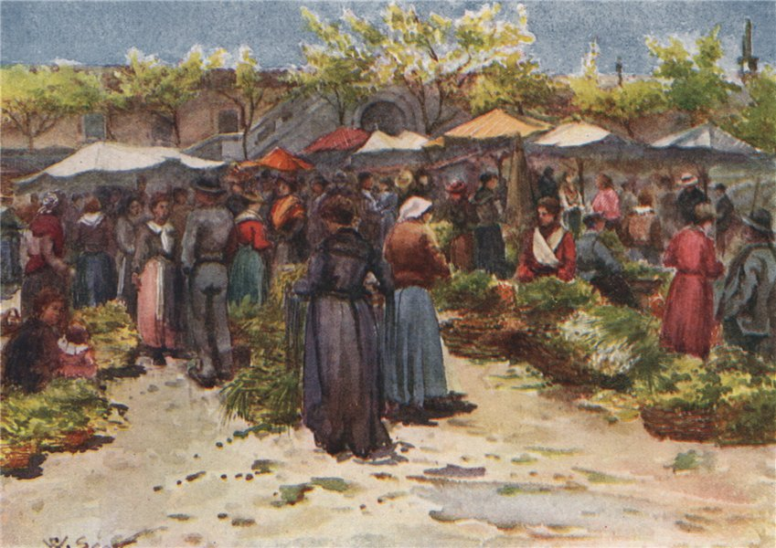 Associate Product 'The vegetable market, Nice, looking south' by Scott. Alpes-Maritimes 1907