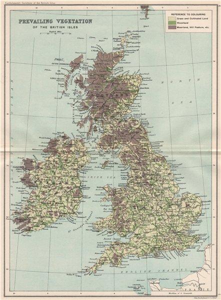 Associate Product BRITISH ISLES VEGETATION Woodland Moorland Cultivated land. BARTHOLOMEW 1904 map