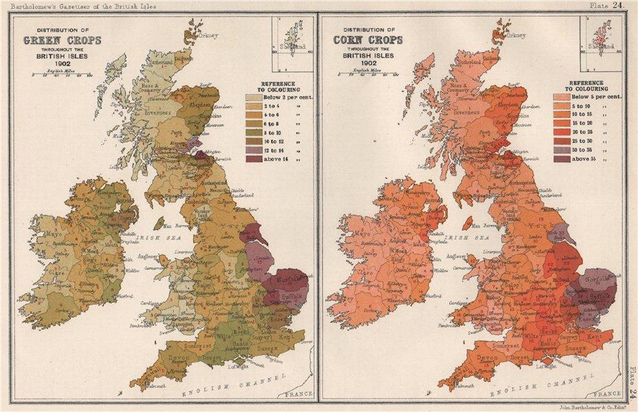 Associate Product BRITISH ISLES ACRICULTURAL Green & Corn Crops distribution. BARTHOLOMEW 1904 map
