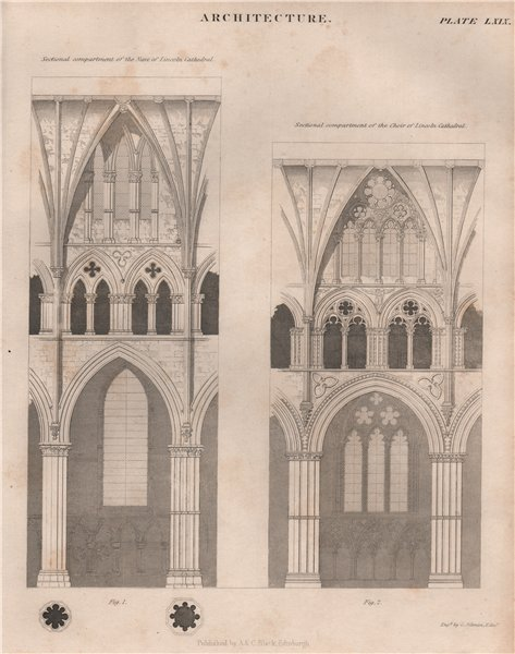 Associate Product LINCOLN CATHEDRAL. Sectional compartments of the nave & choir. BRITANNICA 1860