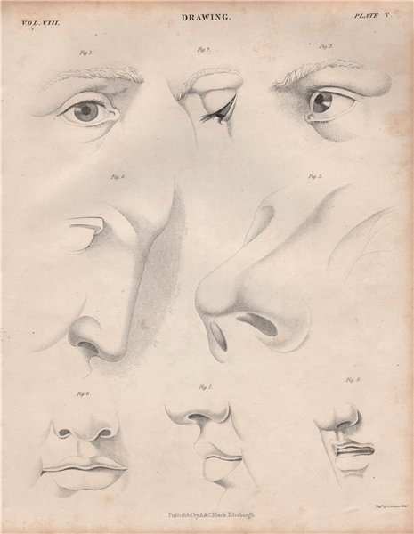Associate Product Figurative drawing. Eyes nose. BRITANNICA 1860 old antique print picture