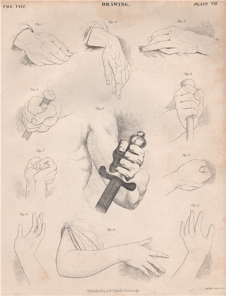 Associate Product Figurative drawing. Hands. BRITANNICA 1860 old antique vintage print picture
