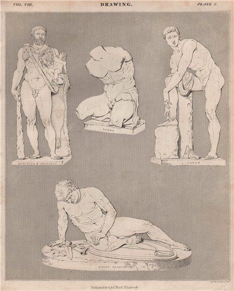 Associate Product Drawing. Hercules & Telephus. Torso. Jason. Dying Gladiator. BRITANNICA 1860