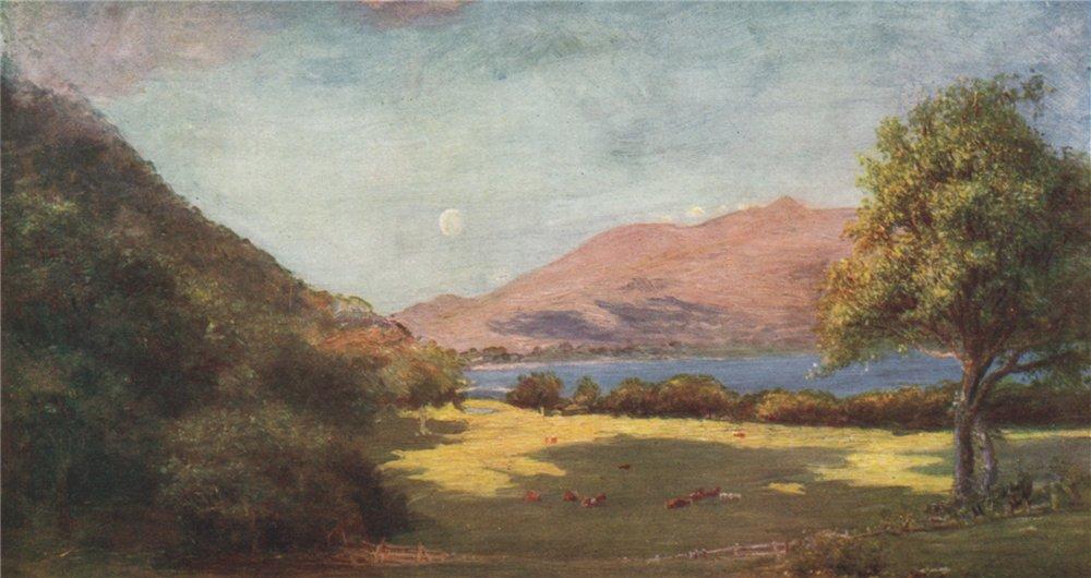 Associate Product 'Glena Mountain, from Torc Cottage' by FrancisSylvesterWalker. Ireland 1905