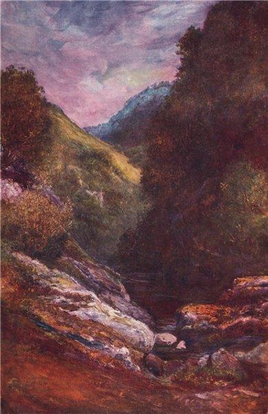 Associate Product 'The Devil's Glen, Wicklow' by FrancisSylvesterWalker. Ireland 1905 print