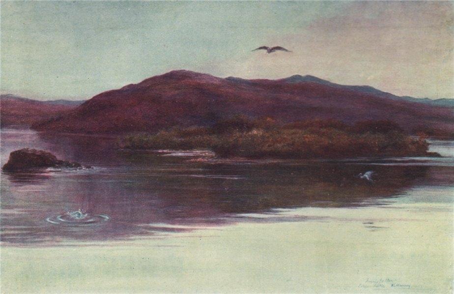 Associate Product 'Innisfallen' by FrancisSylvesterWalker. Ireland 1905 old antique print