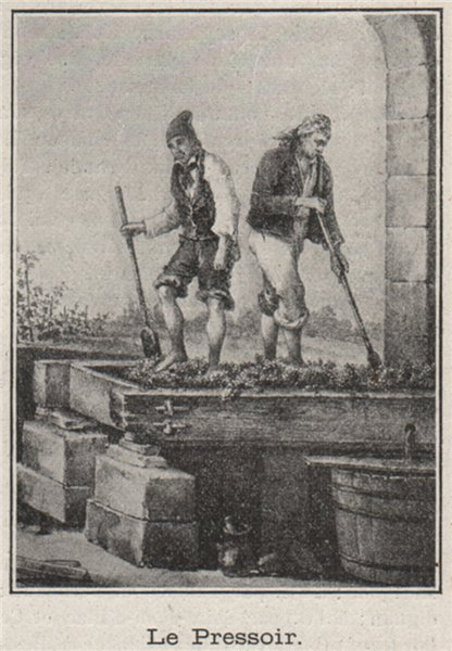 Associate Product GRAVES DE BORDEAUX. Le Pressoir. . SMALL 1908 old antique print picture