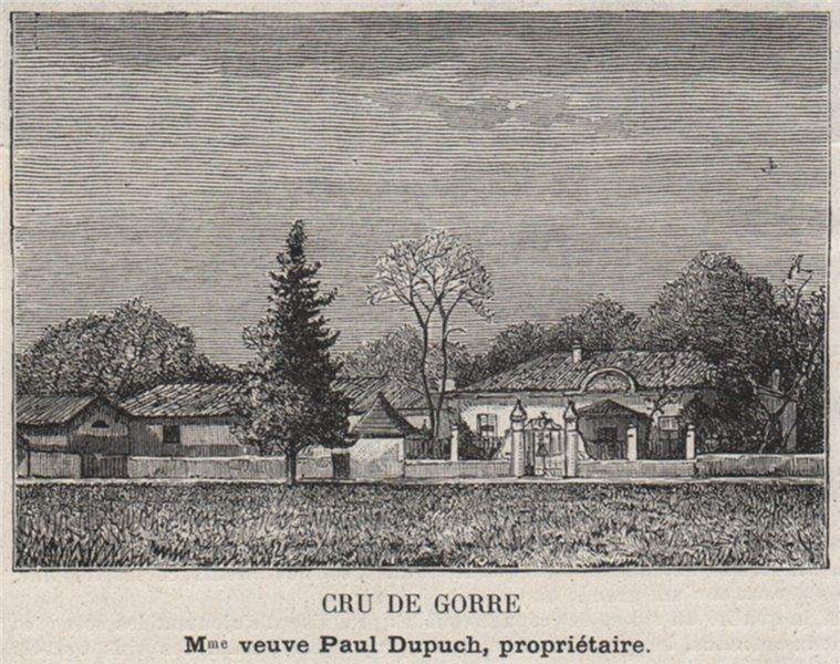 Associate Product GRAVES. MARTILLAC. Cru de Gorre. Dupuch. Bordeaux. SMALL 1908 old print