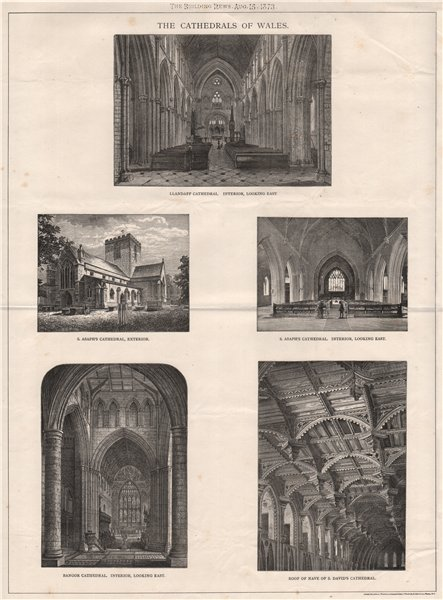 Associate Product The Cathedrals of Wales; Llandaff St. Asaph Bangor St. David's 1873 old print