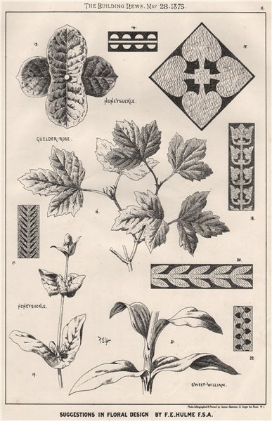 Associate Product Suggestions in Floral; Design by F.E. Hulme F.S.A.. Decorative 1875 old print