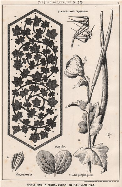 Associate Product Suggestions in Floral; Design by F.E. Hulme F.S.A.. Decorative (4) 1875 print